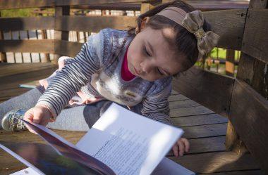 Crianças que não decodificam já sabem ler?